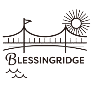 株式会社BLESSINGRIDGE